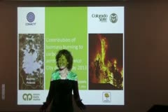 Contribution of Biomass Burning to Carbonaceous Aerosols in Mexico City During May 2013